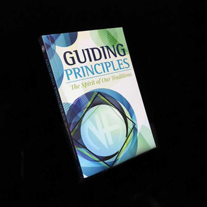 GUIDING PRINCIPLES SOFT