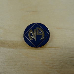 NA LOGO EYE LAPEL PIN